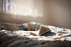 (maddieslevin) Tags: light sun sunlight colour window 35mm canon lens book bed warm colours free filter 5d lightroom filtered canon5dmarkii freelensing