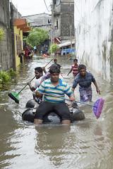 Broom paddling (Photosightfaces) Tags: river flooding flood paddle sri lanka raft srilanka paddling broom colombo srilankan brooms overflow lankan improvise navagumpura orugodawatha