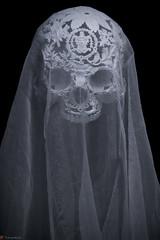 IMG_4991 (m.acqualeni) Tags: sculpture metal dark de dead death skull noir mort gothic goth manuel morbid alain gothique mtal fond tete tte morbide belino acqualeni