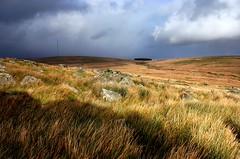 Whispering grass (snowyturner) Tags: winter england sky black grass clouds rocks whispering devon tor tones dartmoor walkhampton