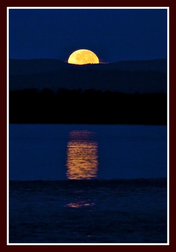 7146354951 467450286c Perigee Super Moon Slideshow  photo