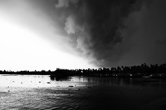 Kerala Monsoon! (VinothChandar) Tags: white black nature water monochrome rain weather clouds canon dark landscape photography photo photos pics picture pic kerala monsoon 5d climate mkii alleppey waterscape alapuzha