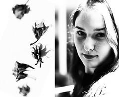 1/52 (laurenabishop) Tags: shadow blackandwhite selfportrait girl lines diptych seeds hibiscus nikkor50mmf18 drying tendrils laurenbishop nikond700