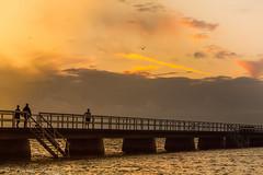 Sunset Bridge (Pdiddy3g) Tags: bridge sunset beach training sweden jogging malmö