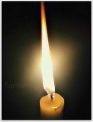 Luz (Tamanegi!) Tags: luz llama fuego vela tamanegi teléfoteando