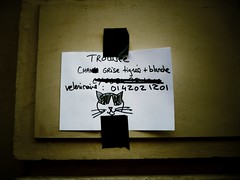 IMG_0212 (mtparnassus) Tags: paris cat french lost lostcat