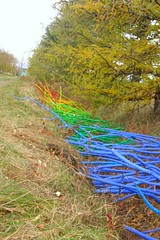 Réal Calder, Les racines de l'arc-en-ciel, 2012 (Retis) Tags: landart insitu installation installationart montsainthilaire sitespecificart sainthilaire sthilaire créationssurlechamp octobre2012 orchard verger nature éphémère ephemeralart réalcalder lesracinesdelarcenciel arcenciel rainbow racines roots colorful cc creativecommons allfreepictures