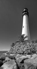 Bill Baggs Lighthouse, Florida (Seaside Artistry) Tags: ocean statepark light blackandwhite lighthouse white black tower beach faro seaside rocks lighthouses florida rocky shore cape lantern seashore sentinel beaach farito pharology lbillbaggs