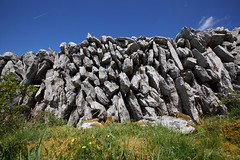 Stone Walls of the Burren 2 (Michael Foley Photography) Tags: county ireland clare burren countyclare
