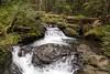 Twentytwo Creek (dmitry.antipov) Tags: washington 6d 241054lis