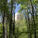 Blick zur Festung Homburg
