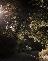 Memory Lane (tommy kuo) Tags: trees people sunlight samsung australia melbourne victoria royalbotanicgardens affairs myass nx1