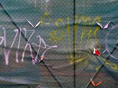 megillah 4... (bruce grant) Tags: tags cerca obras tela