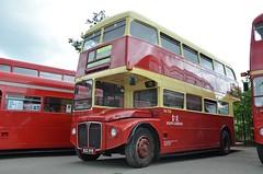 RM1822 (stavioni) Tags: park bus london south transport royal double routemaster dye decker rm 1822 aec 822 rm1822