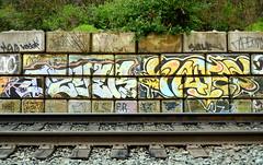 dzyer / antes (thesaltr) Tags: art graffiti bayarea eastbay stm dzyer antes thesaltr w013