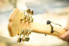 Nuevos Acordes (gritos_silenciosOs) Tags: guitarra otoño acordes