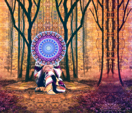 Larry Carlson, Onawa, digital chromogenic print, 2011.