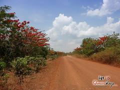 Trail- Koh Ker.jpg