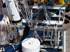 rope (Grenzeloos1 -) Tags: ship hamilton brisbane queensland ropes dockside youngendeavour