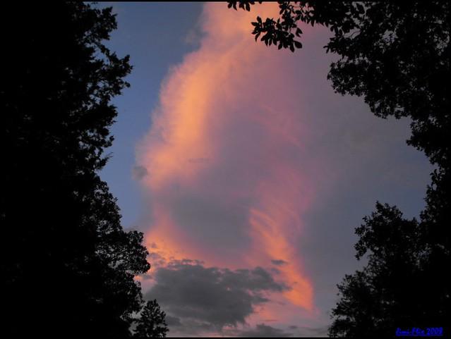 Painted Skies (7)