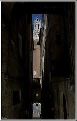 Clarooscuro (Paulina58) Tags: plaza italy paisajes italia viajes siena vacaciones calles 2012 paulina latoscana paulina58