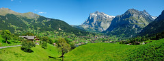 Panorama of Grindelwald (Werner_B) Tags: blue summer panorama mountain mountains alps green nature berg landscape schweiz switzerland europe swiss natur meadow panoramic berge grindelwald alpen landschaft ferien    turist