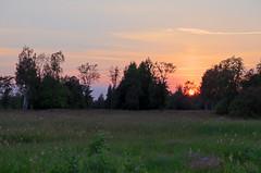 Pikese loojang Tipu heinamaal. (Jaan Keinaste) Tags: sunset sun estonia pentax hdr eesti pike k7 soomaa loojang heinamaa viljandimaa pentaxk7 kpuvald tipukla