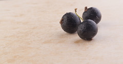 blackcurrant (Ratmir Letchik) Tags: blackcurrant