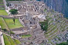Machu Picchu-64
