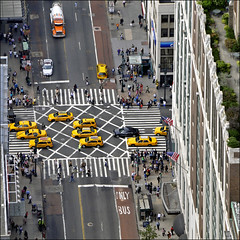 the black sheep (Dreamer7112) Tags: street nyc newyorkcity people white ny newyork black rooftop yellow square crossing squares manhattan stripes yellowcab nypd streetscene busstop macys intersection subwayentrance crossroad cabs crossroads blacksheep walkin roofgarden yellowcabs walkling