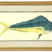 130.  Artist Signed Proof of a Dolphin Fish