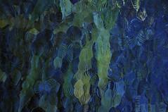TINTA DE LUZ NO VIDRO - IMPRESSIONISMO -  (91) (ALEXANDRE SAMPAIO) Tags: light brazil color art luz linhas brasil contrast painting cores creativity photo frames arte details natureza experiment imagens free creation contraste impressionism forms beleza experimentation fotografia formas desenhos franca cor metamorphosis pintura quadros pictorial mutation metamorfose experimento seduo criao exposio transparncia detalhes criatividade impressionismo imaginao manchas experimentao intangible admirao contemplao deformao pictrico imaterial mutao immateriality inkonglass alexandresampaio manchasdecor imaterialidade tintanovidro ilusoimpressionista impressionistillusion