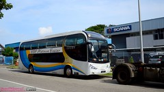 DSC_7597 ((buses[IN]gapore!)) Tags: auto sc singapore cruiser scania wts