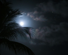 Blue Moon May 21st 2016 (Lowell Witter) Tags: sky mars beach night clouds island hawaii paradise dream luna palm fullmoon kauai tropical magical bluemoon
