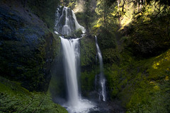 If Rivendell Were Real (gwendolyn.allsop) Tags: water creek forest waterfall washington moss hike falls national pnw gifford pinchot d5200