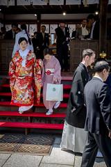Wedding at Matuso Taisha (Christian Kaden) Tags: wedding japan kyoto shrine kultur culture marriage clothes   kimono miko kioto shinto kansai hochzeit  taisha   kleidung schrein    shrinemaiden shintoism       matsuoshrine      matsuoschrein schreinmdchen