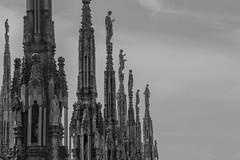 Milano (Alessandra Arcari) Tags: sunset church skyline sunrise tramonto cathedral alba milano culture chiesa duomo notte cultura palazzi giorno marmo guglie grattacieli