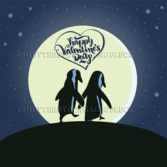 Happy Valentines Day Illustration with penguins (Gal'ko) Tags: cute art love nature animal illustration penguin design funny couple day sweet drawing unique decorative cartoon decoration valentine romance invitation card valentines romantic lovely deco greeting vector