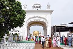 India - Punjab - Amritsar - Golden Temple - 215 (asienman) Tags: india sikh punjab amritsar gurudwara goldentemple harmandirsahib asienmanphotography