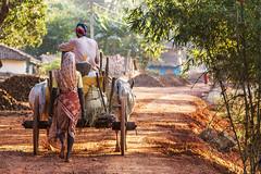 Kawardha - Chhattisgarh - India (wietsej) Tags: india car zeiss sony wife farmer 135 18 a100 chhattisgarh sal135f18z kawardha