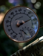 IMG_9469.CR2 (jalexartis) Tags: photography photo contest temperature challenge facebook photochallenge photoadaychallenge junechallenge jalexartis junephotochallenge temperatureprompt tthermometer