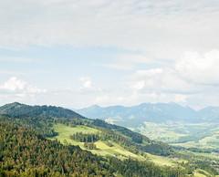 Bregenzerwald (Voigtography) Tags: alps color tree 120 film nature analog forest mediumformat landscape austria sterreich asahi pentax takumar kodak 6x7 alpen landschaft portra 105mm vorarlberg filmphotography pentax67 bregenzerwald kodakportra filmisnotdead bdele 35to220