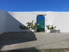 Wednesday Colours - White Wall and Prickly Pear (Pushapoze - getting better) Tags: italia italy ostuni puglia pouilles fichi dindia gate door porta wall white teal
