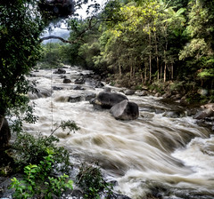 "Mossman Gorge 2 • <a style=""font-size:0.8em;"" href=""http://www.flickr.com/photos/7605906@N04/27912498095/"" target=""_blank"">View on Flickr</a>"
