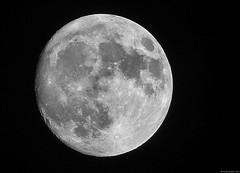 Moon - Perigee 2012 (Nemodus photos) Tags: sky moon lune space ciel espace solareclipse fz50 tonightsmoon