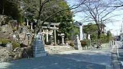 熊野神社市民の森(師岡熊野神社)(Morooka Kumano Shrine, Kumano Shrine Community Woods)