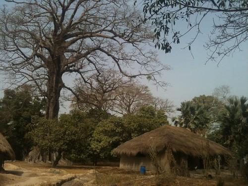 Village in Casamance