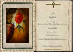 Evangelio según San Mateo 9,1-8. Obra padre Cotallo