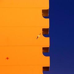 Nice day for it (Arni J.M.) Tags: shadow sky building architecture geotagged iceland islandia seagull reykjavik geotag reykjavk sland islande flyby islanda nikond80 nicedayforit artlegacy bestcapturesaoi