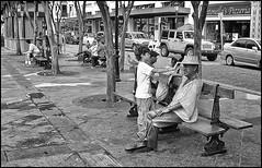 Niño, Tite y Banco (Boy, Tite & Bench) (Samy Collazo) Tags: boy bw puertorico pb bn sanjuan salsa niño tite musico compositor lightroom3 epsonperfectionv500 catalinocuretalonso silverefexpro2 olimpuscamediac5500